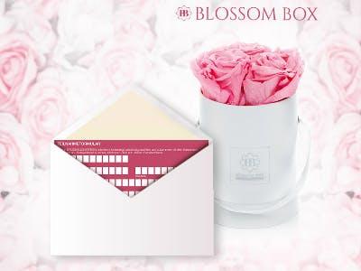 Blossom-Box-Aktion von Henkel