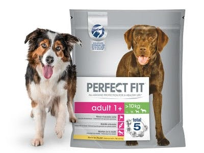 Geld-zurück-Aktion Perfect Fit Hund
