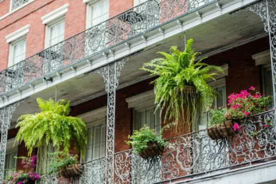 Schöne Balkonbepflanzung