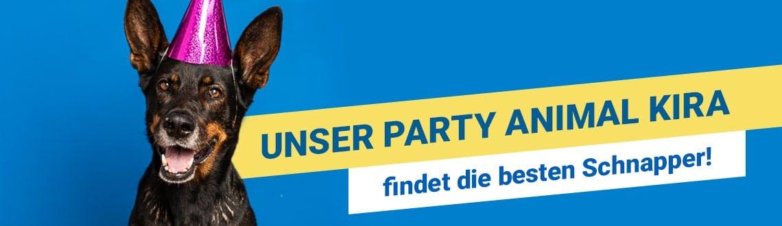 Die besten Party-Schnapper