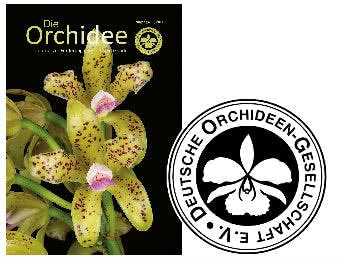 GRATIS Zeitschrift Die Orchidee