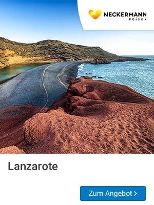 Frühbucher Urlaub 2019 auf Lanzarote erleben.