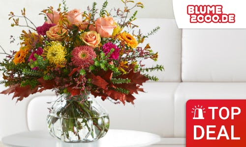 Deals bei Blume2000.de
