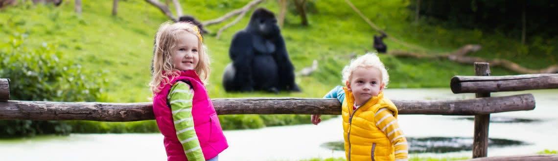 Günstig in den Zoo mit der ganzen Familie dank Rabatten