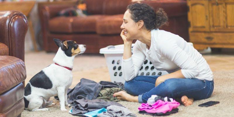 Waschmaschinen für die Tierliebhaber ganz einfach finden