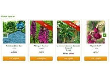 Pflanze zum Sparpreis, denn mit unseren Gutscheinen wird es günstig.