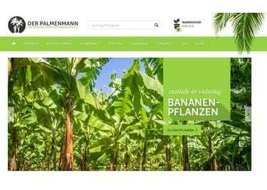 Palfarne, Bananenpflanzen, Kakteen und viele weitere exotische Pflanzen