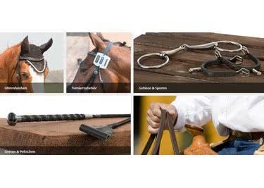 Equiva macht Pferd und Reiter glücklich