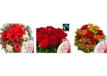 SPARWELT schenkt dir Gutscheincodes für FloraPrima, sodass du dich über Rabatte freuen kannst