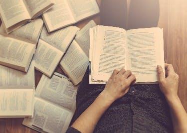 Ein Genuss für Bücherfreunde.