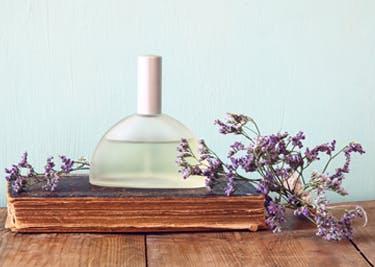 Parfüm für jeden Geschmack findest du im Onlineshop von Parfum.de