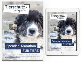GRATIS Magazin Tierschutz