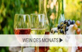 VineShop24 der Wein-Experte