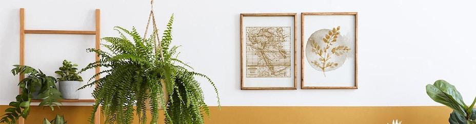 Poster & WanddekorationBild