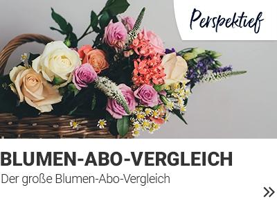 Blumenabo-Vergleich banner