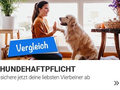 Hundehaftpflicht Vergleich banner