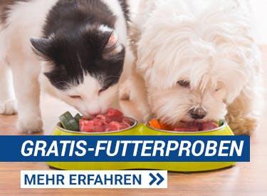 Kostenlose Futterproben für Hunde und Katzen