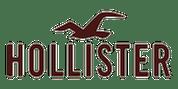 https://de-eu.hollisterco.com/shop/eu logo