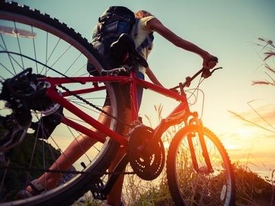 10 Online-Fahrradhändler im Test