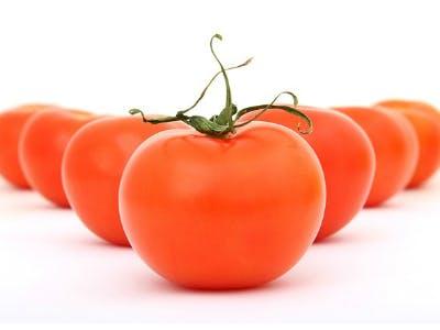Gratis-Saat: Tomatensamen für euren Garten/Balkon kostenlos bestellen