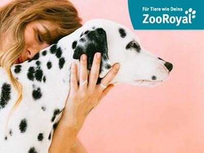 Spare jetzt 10€ auf alles bei ZooRoyal